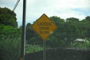 drive-slowly